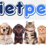 Diễn Đàn VIET PET | Vietpet