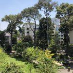 Bệnh viện Phạm Ngọc Thạch | Phát Triển – Nhân Văn – Thiện Nguyện